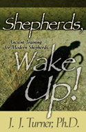 Shepherds, Wake Up! book cover